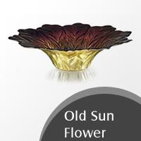 old-sun-flower