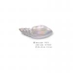 shell-19574