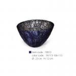 turtle-18013